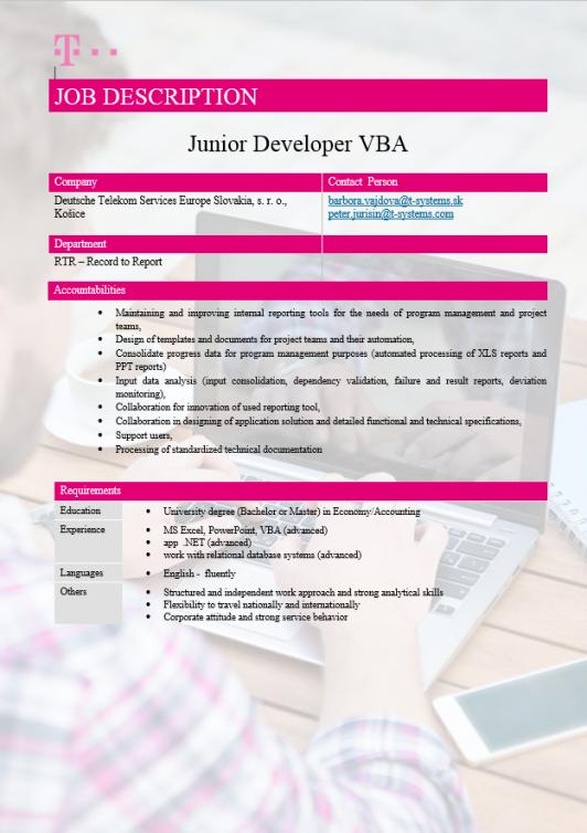 Junior Developer VBA