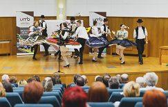 Univerzitný folklórny súbor Mladosť